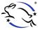 logo_sans_cruaute_pm_blanc.jpg