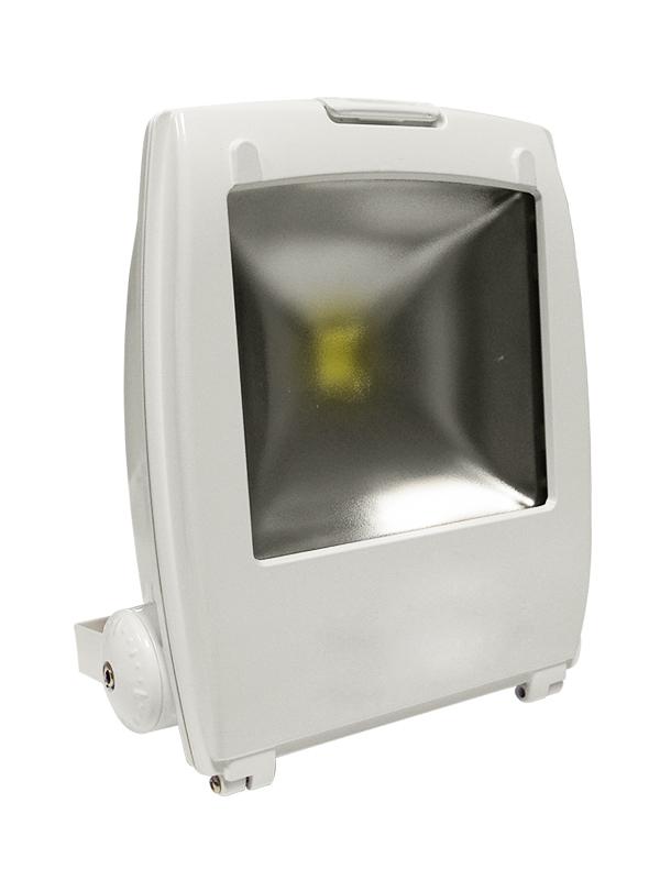Proiettore Led Bianco 230V 50W Bianco Freddo Mod. Ap50Bf_Cod. 930143_AlcaPower