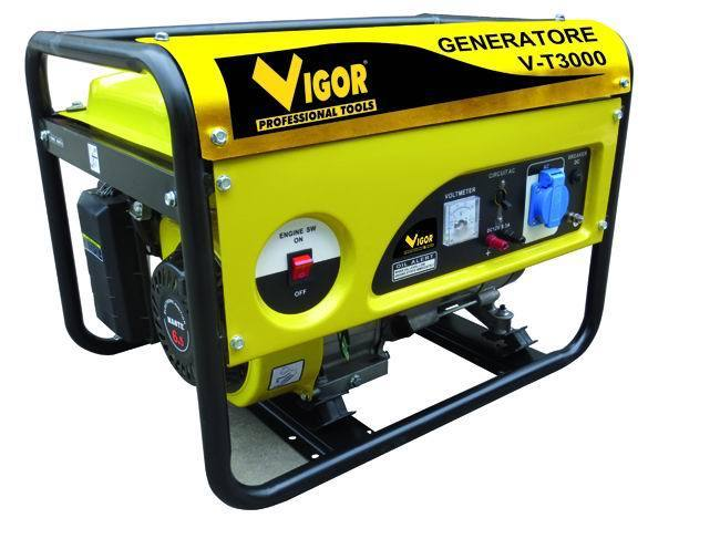 GENERATORE V-T3000 Cod.5309220 - Vigor