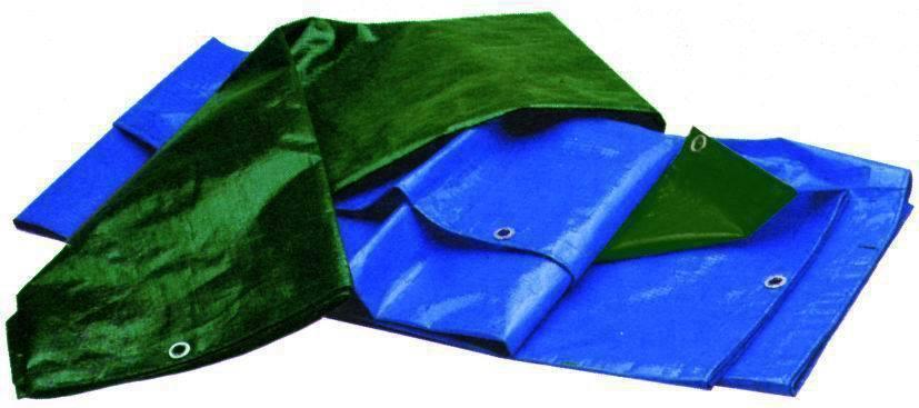 Teloni Antistrappo Pesantibicolor Blu/Verde_Cod. 7985055_Vuemme