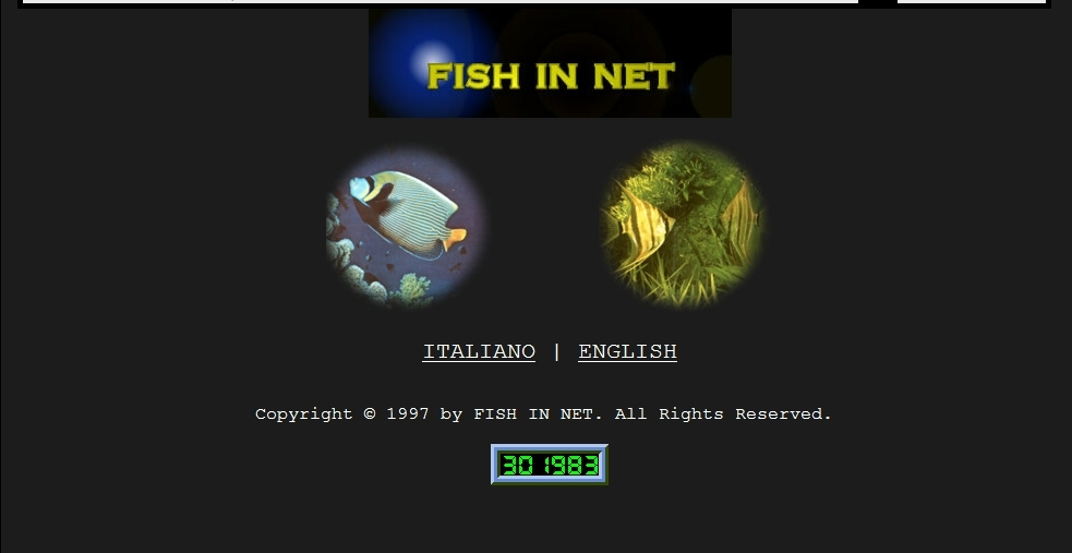 fish in net 1998