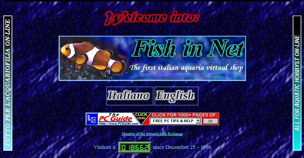 Fish in Net 1997